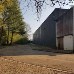 Vente Entrepôt Gretz-Armainvilliers 7500 m²