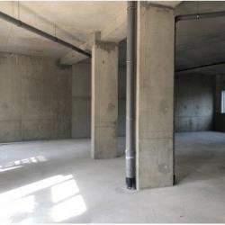 Location Local commercial Échirolles 227 m²