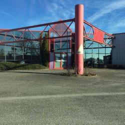 Location Local d'activités Colmar 400 m²