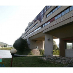 Location Local commercial Ampuis 281 m²