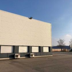 Location Local d'activités Colmar 740 m²