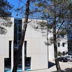 Vente Bureau Sophia Antipolis 330 m²