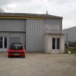 Location Local commercial Avignon 215 m²