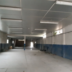 Location Local commercial Toulouse 310 m²