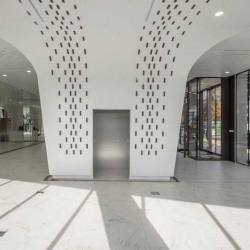 Location Bureau Paris 13ème 11866 m²