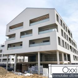 Vente Local commercial Lieusaint 279 m²