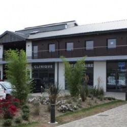 Location Bureau Serris 63,5 m²