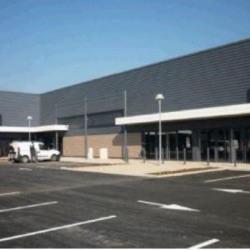 Vente Local d'activités Saint-Bonnet-de-Mure 232,88 m²