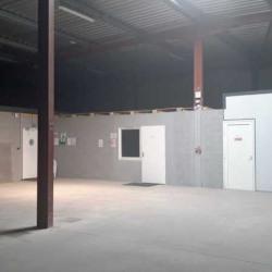 Location Local d'activités Saint-André-de-Cubzac 800 m²
