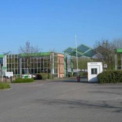 Location Bureau Saint-Thibault-des-Vignes 4782 m²