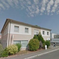 Vente Bureau Haguenau 680 m²