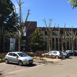 Location Bureau Montigny-le-Bretonneux 241 m²