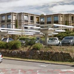 Vente Bureau Sophia Antipolis 250,35 m²