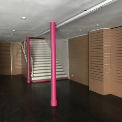 Location Local commercial Strasbourg 510 m²