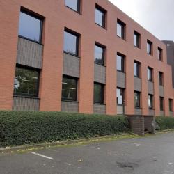 Location Bureau Montigny-le-Bretonneux 180 m²