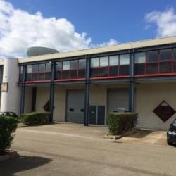 Location Local d'activités Trappes 382 m²
