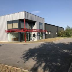 Location Local d'activités Rouvroy 992 m²