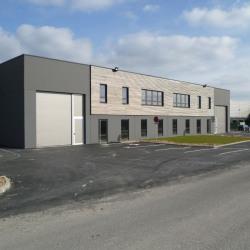 Vente Local d'activités Avelin 1266 m²