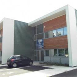 Location Local d'activités / Entrepôt Saint-Martin-d'Hères