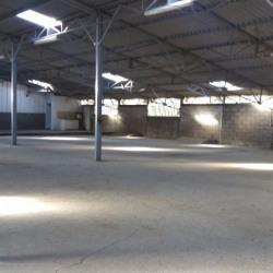 Vente Local d'activités Capens 800 m²