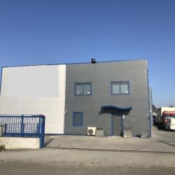 Location Local d'activités Saint-Jory (31790)