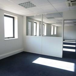 Location Bureau Bussy-Saint-Georges 214 m²