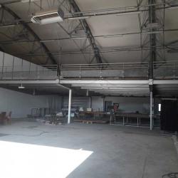 Location Local d'activités Frontignan 120 m²