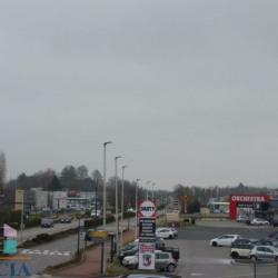 Vente Local commercial Anthy-sur-Léman 1164 m²