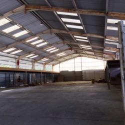Vente Local d'activités Rochefort-du-Gard 8000 m²