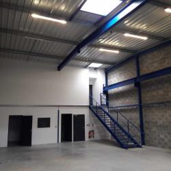 Location Bureau Saint-Jean-d'Illac 1345 m²