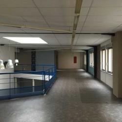 Location Local d'activités Villeurbanne 2007 m²