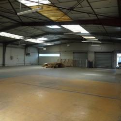 Vente Local d'activités Toulouse 832,11 m²