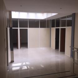 Location Bureau Ivry-sur-Seine 245 m²