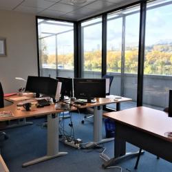 Location Bureau Lyon 4ème 226 m²