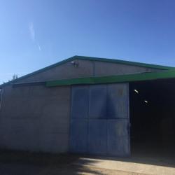 Location Local d'activités Mionnay 200 m²