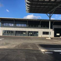 Location Local d'activités Plaisance-du-Touch 6214 m²