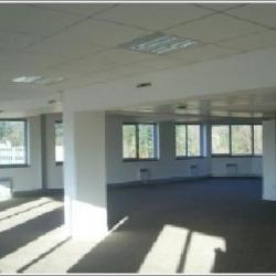 Location Bureau Lyon 4ème 579 m²