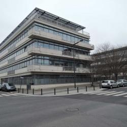 Location Bureau La Plaine Saint Denis (93210)