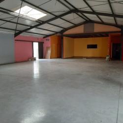 Location Local d'activités Muret (31600)