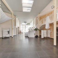 Vente Local d'activités Marolles-en-Brie 1857 m²
