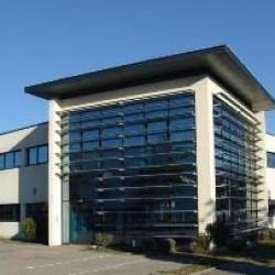 Location Local d'activités Grenoble 912 m²