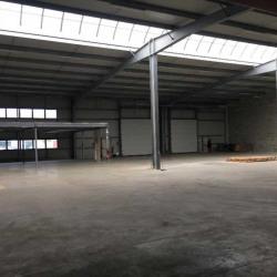 Location Local d'activités Pessac 1300 m²
