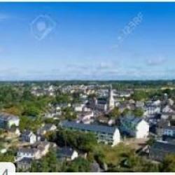 Vente Local d'activités / Entrepôt Savenay