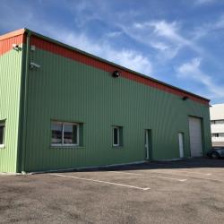 Location Local d'activités Ludres 585 m²