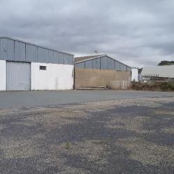 Location Local d'activités Narbonne 900 m²