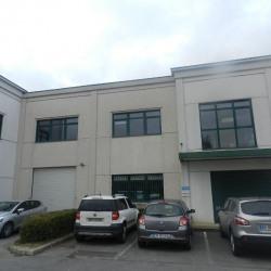 Location Local d'activités Bussy-Saint-Martin 407 m²