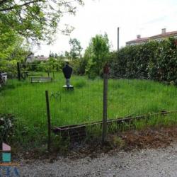 Vente Terrain Castres 0 m²