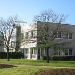 Location Bureau Chenôve 188 m²