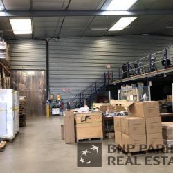Vente Local d'activités Saint-Avertin 2524 m²