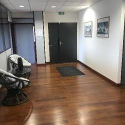 Vente Bureau Magny-le-Hongre (77700)